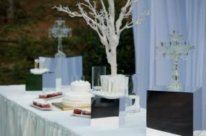Private-Wedding-008