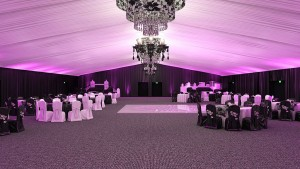 Black-White-Purple