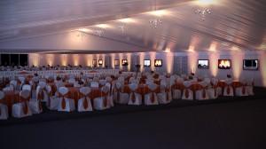 Orange&White7